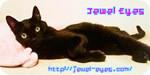 link_jeweleyes